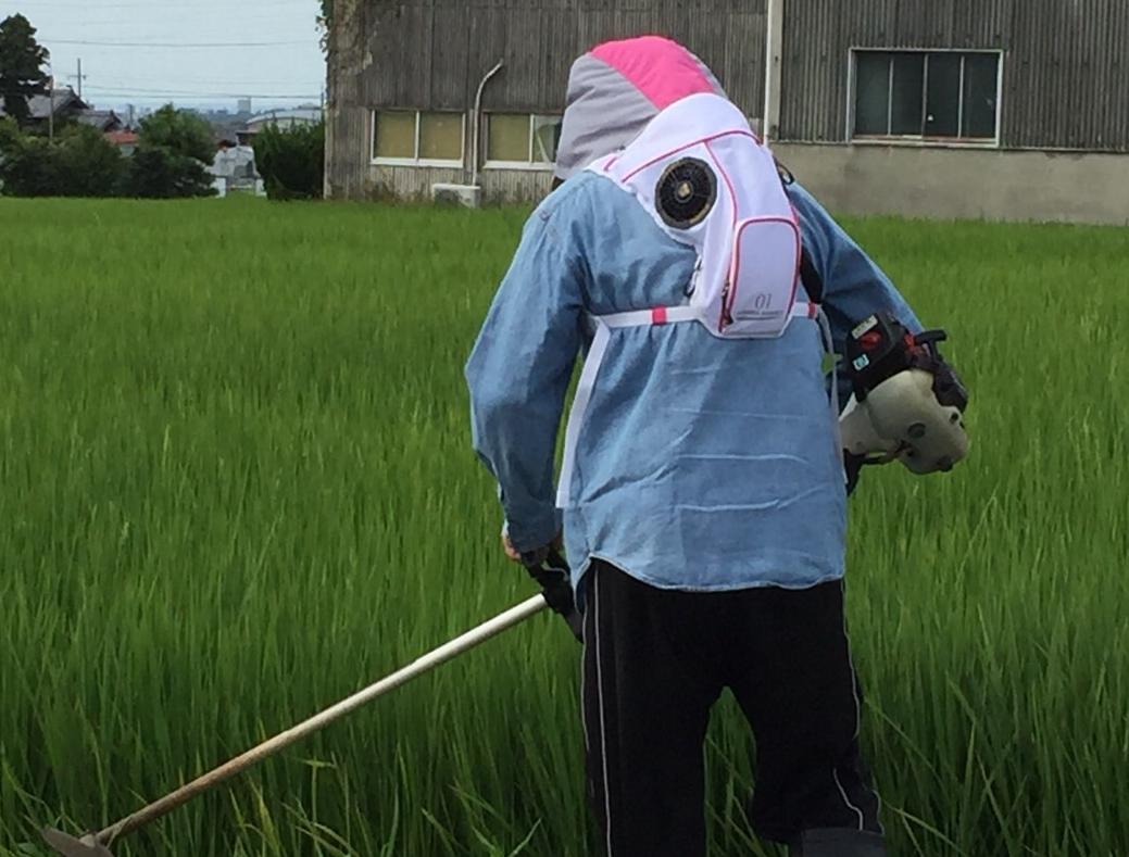 サマーランナー 草刈り